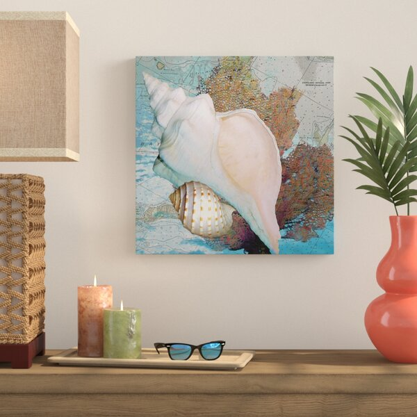 Shell and Chart II Graphic Art on Wrapped Canvas by Bay Isle Home