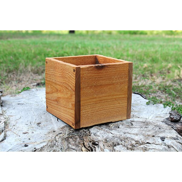 Danica Square New Cedar Planters Box by Millwood Pines