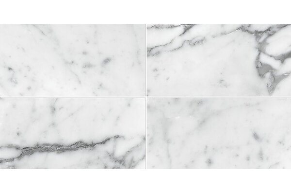 Carrara 3 x 6 Marble Subway Tile in White by Parvatile