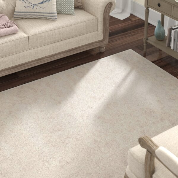 Akron Creek Cream/Light Gray Area Rug by Lark Manor