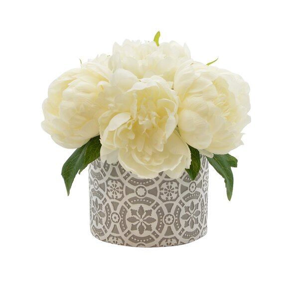 Peony in Pot by Ophelia & Co.