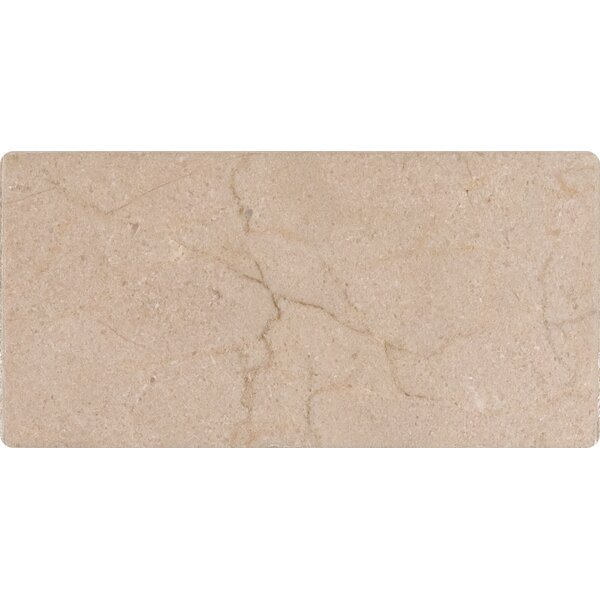 3 x 6 Marble Tile in Honed Cream by MSI