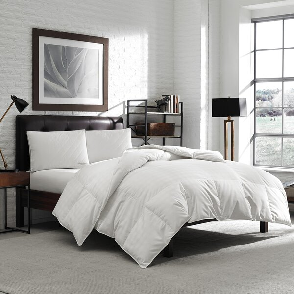 650 Fill Power Oversized Down Comforter By Eddie Bauer.
