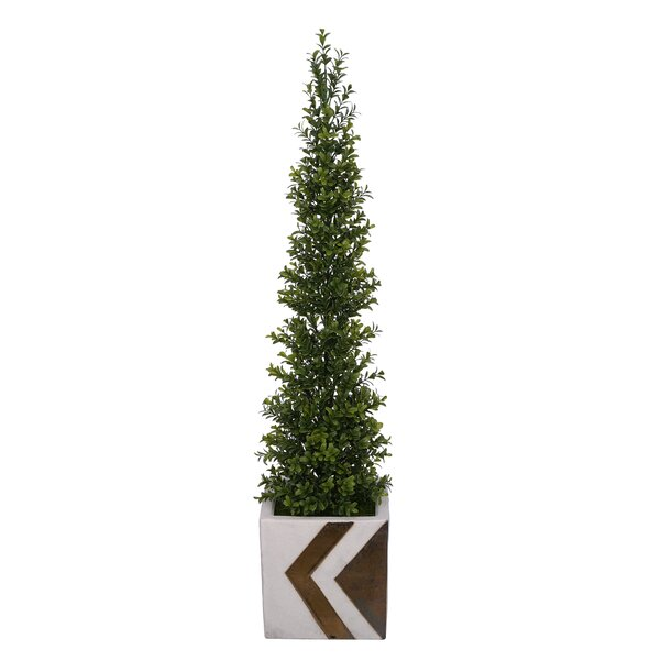 Artificial Desktop Boxwood Topiary by George Oliver