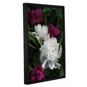 Peonies II Framed Photographic Print by House of Hampton