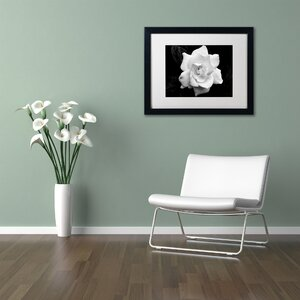 Gardenia in Black and White Framed Photographic Print by Latitude Run