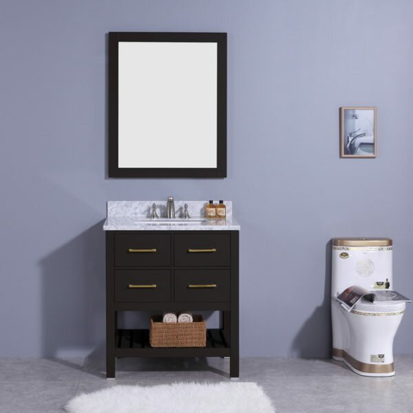 Rosemont 31 Single Bathroom Vanity Set with Mirror by Breakwater Bay