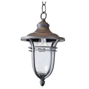 Top Reviews Ferrante 1-Light Outdoor Hanging Lantern By Charlton Home