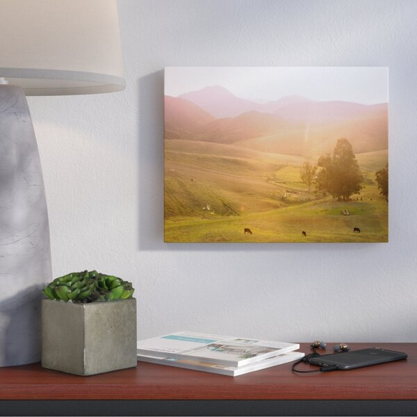 Cows Photographic Print on Wrapped Canvas by Wrought Studio