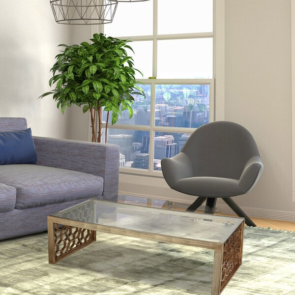 Anurima Coffee Table By Brayden Studio