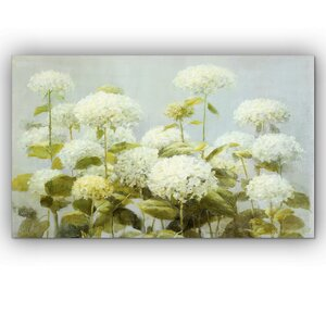'White Hydrangea Garden' by Danhui Nai Graphic Art on Wrapped Canvas by Wexford Home