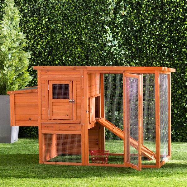Freddy Chicken Coop with Outdoor Run by Archie & O
