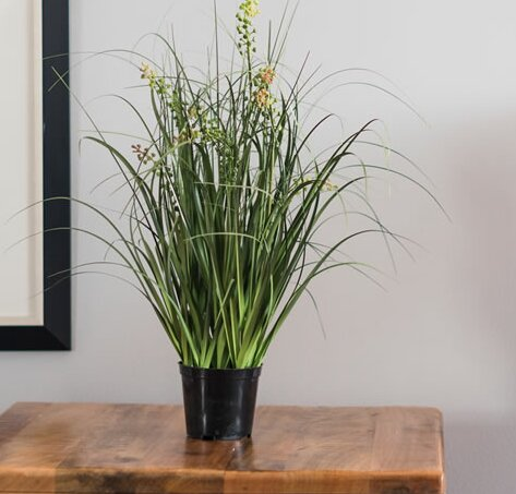 Artificial Flowering Grass in Cylinder Pot by Highland Dunes