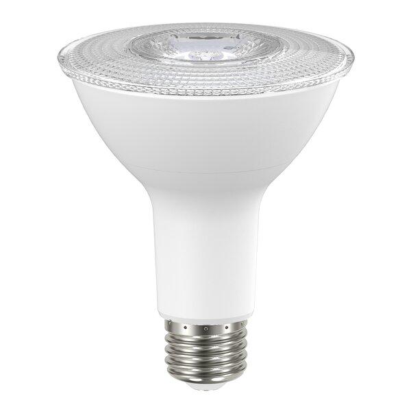 8W LED Light Bulb by Ohyama Lights®