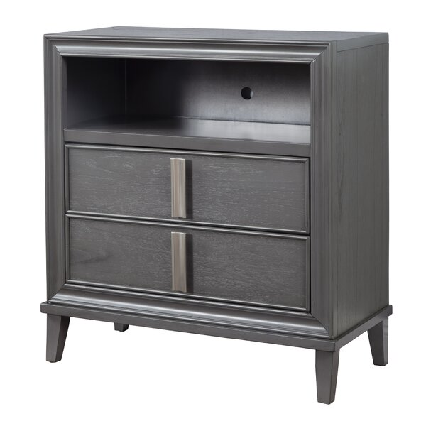 Winchester 2 Drawer Accent chest by Orren Ellis
