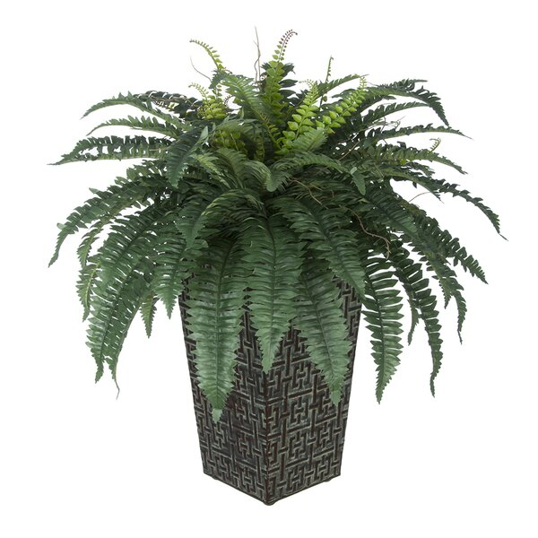 Artificial Fern Floor Plant in Planter by House of Silk Flowers Inc.