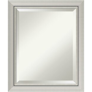 Orren Ellis Berenice Narrow Burnished Silver Frame Rectangle Accent Wall Mirror