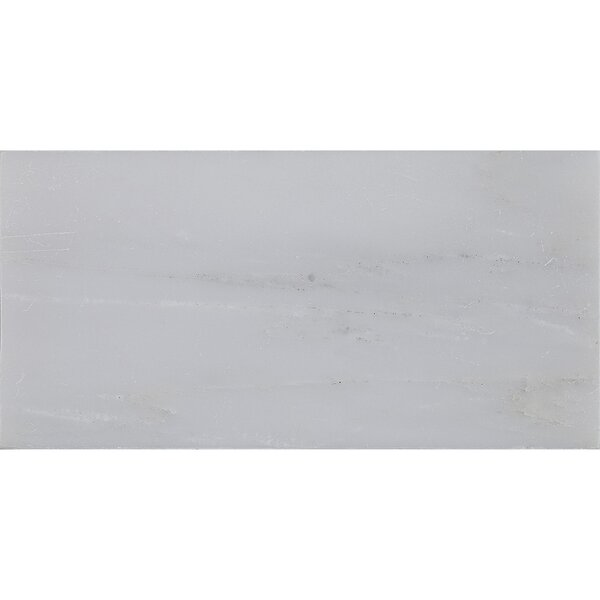 Harrison 3 x 6 Marble Subway Tile in First Snow Elegance by Itona Tile