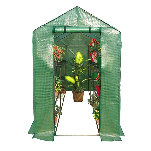 6.25 Ft. W x 4.08 Ft. D Greenhouse by OGrow