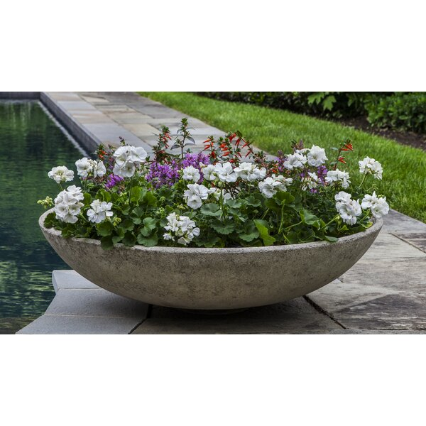 Pettaway Bowl Cast Stone Pot Planter by Latitude Run