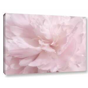 Soft Petals Photographic Print on Wrapped Canvas by One Allium Way