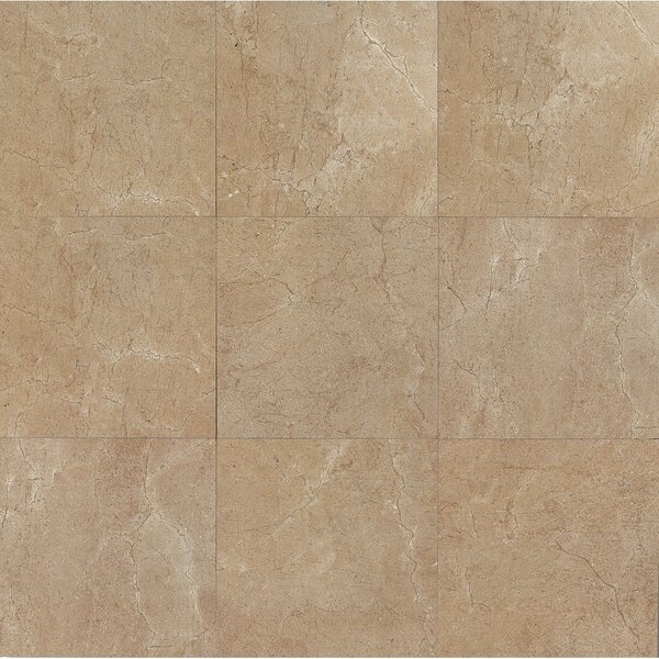 El Dorado 12 x 12 Porcelain Field Tile in Starfish by Grayson Martin
