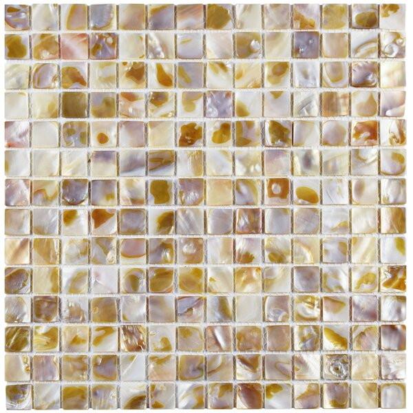 Shore 0.77 x 0.77 Seashell Mosaic Tile in Beige by EliteTile