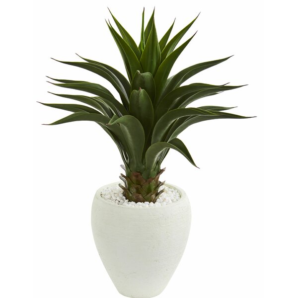 Agave Floor Foliage Plant in Planter by Orren Ellis