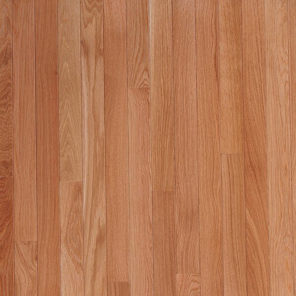 Fulton 3-1/4 Solid White Oak Hardwood Flooring in Seashell by Bruce Flooring