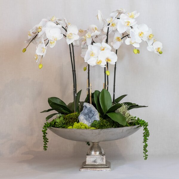 Orchid and Celestite in Urn by Greyleigh