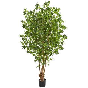 Artificial Maple Tree Wayfair