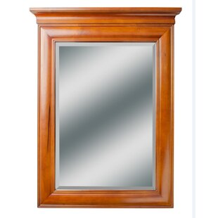 Bayou Breeze Aiyana Rectangle Wood Vanity Mirror