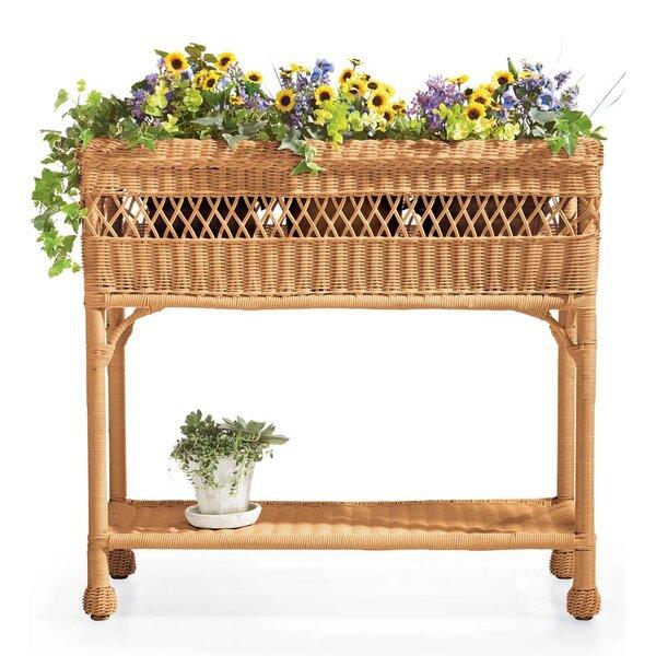 Easy Care Resin Wicker Raised Garden by Plow & Hearth
