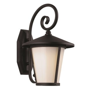 1-Light Outdoor Wall Lantern By Efficient Lighting Outdoor Lighting