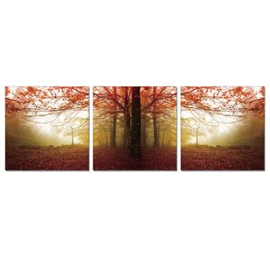 Autumn Leaves 3 Piece Photographic Print Wrapped Canvas Set by Furinno