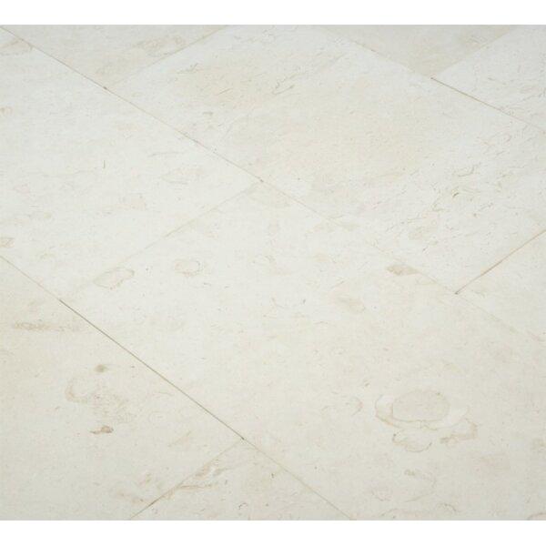 6 x 12 Limestone Field Tile in Corinthian Fossil by Ephesus Stones