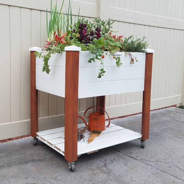 Vinyl Wrapped Elevated Oak Raised Garden with Shelf by Gronomics