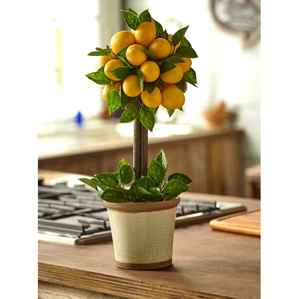 Lemon Ball Round Topiary Arrangement in Decorative Pot by Nearly Natural