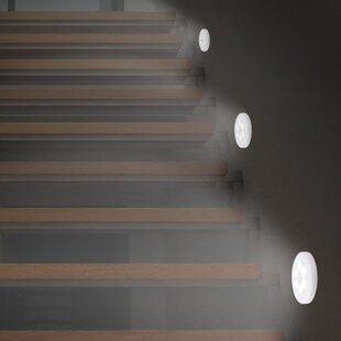 Searching for Night Light ByLusana Studio