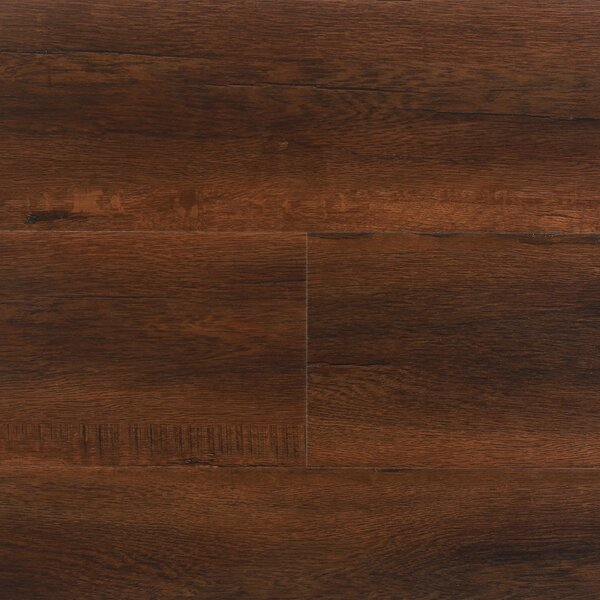 8 x 48 x 12.3mm  Laminate Flooring in Havana (Set of 22) by Serradon