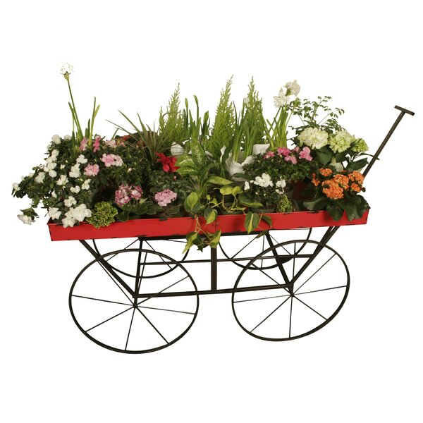 East Drive Large Distressed Metal Wheelbarrow Planter by August Grove