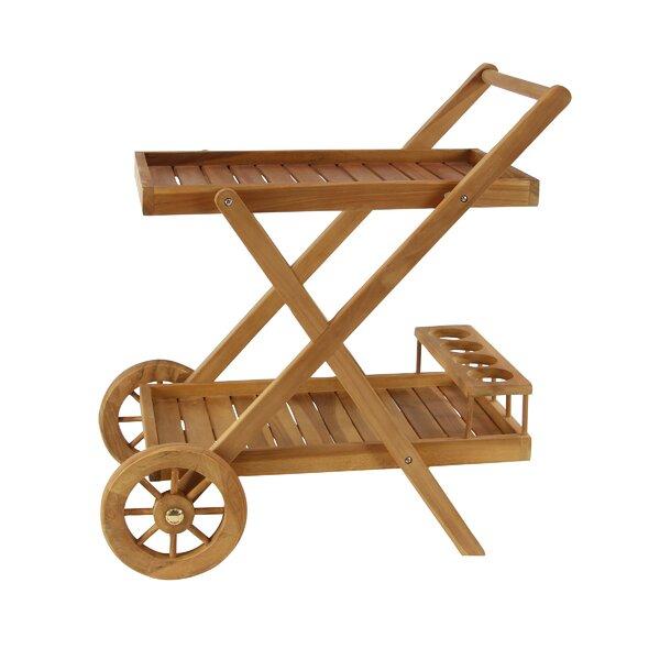 Osterley Teak Wood 2-Tiered Slatted Serving Bar Cart by Gracie Oaks