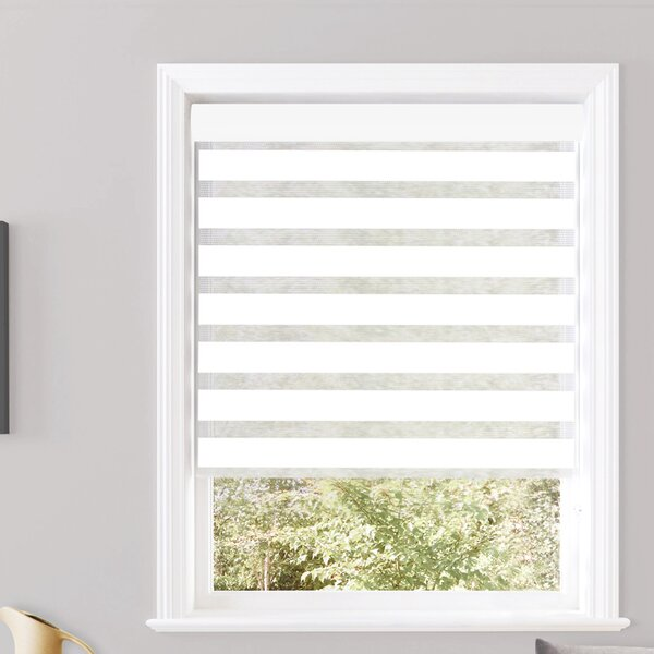 Pesce Day and Night Semi-Sheer Roller Shade by Ebern Designs