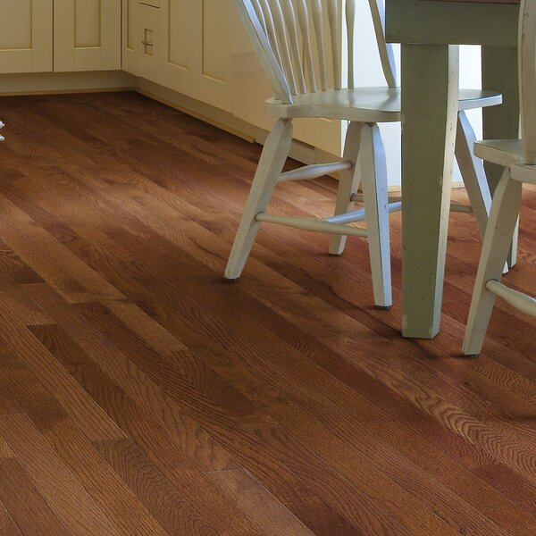 Sawgrass 2-1/4 Solid White Oak Hardwood Flooring in Laurel by Shaw Floors
