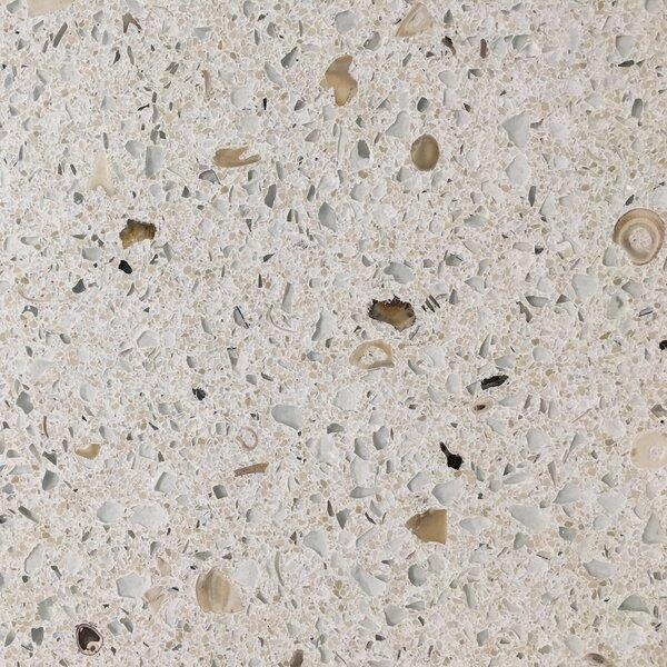 Specialty Gem 12'' x 12'' Seashell Field Tile in Seafoam by Matrix-Z