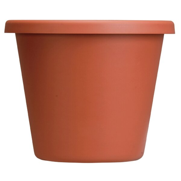 Clay Pot Planter by Akro-Mils