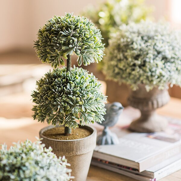 Rustic Boxwood Topiary by Gracie Oaks