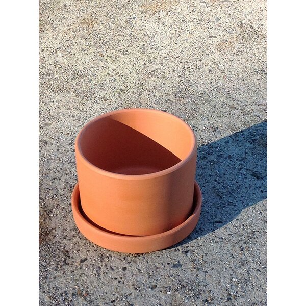Purnell Fat Walled Garden Terracotta Pot Planter by August Grove