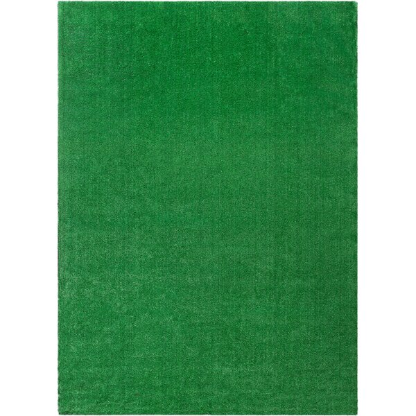 Venice Modern Green Indoor/Outdoor Area Rug by Well Woven