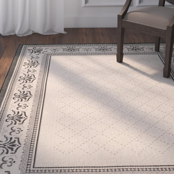 Beasley Vine Border Outdoor Rug by Astoria Grand